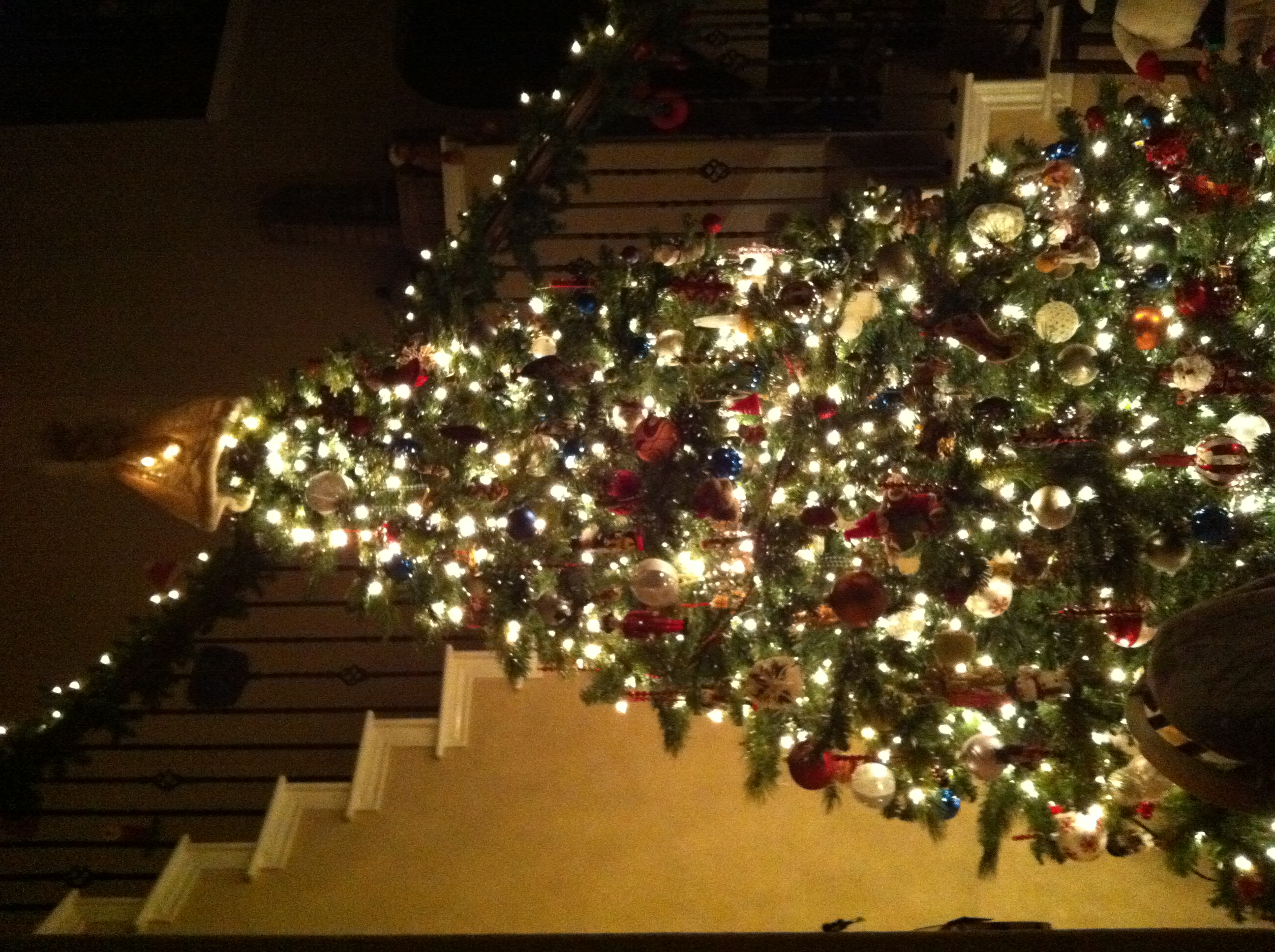 Why do we decorate with christmas lights - And Not Only Do We Decorate Our Trees Inside We Also Put Ornaments On The Trees Outside Along With The Reindeer Moose And Snowman That Light Up Our